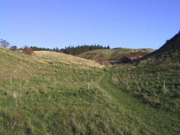 08-Ballebjerg - Natur 1