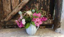 Blomster, Staldgalleriet Samsoe
