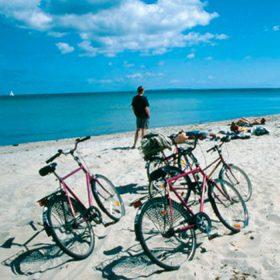Endagstur ved stranden - Samsø