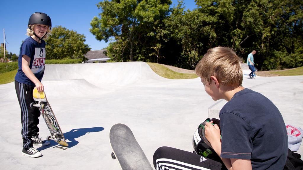 Skate4
