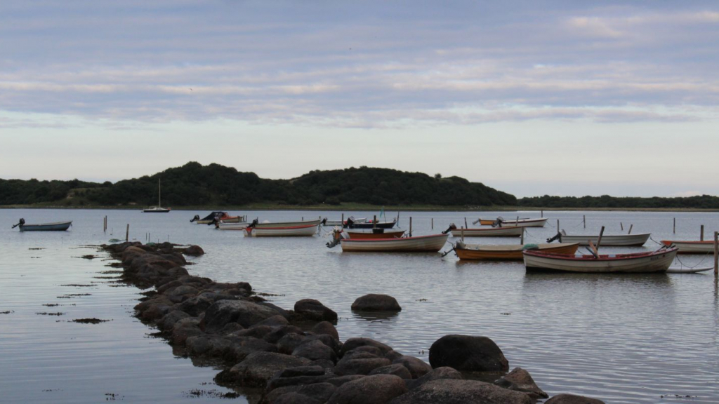 Fjorden mod øst (4)
