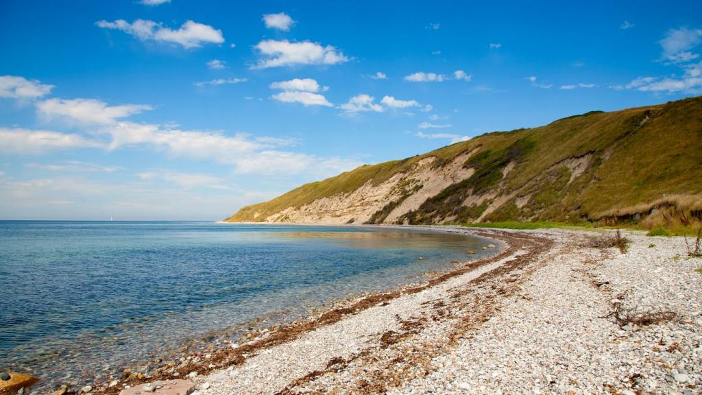 Nordøens sten og sandstrande (2)