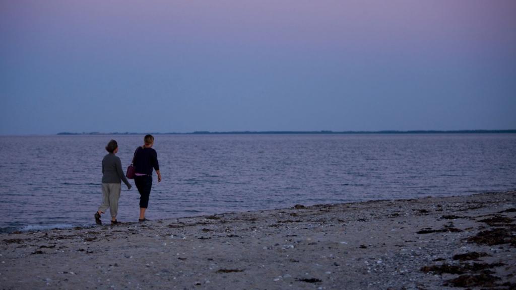 Nordøens sten og sandstrande (3)