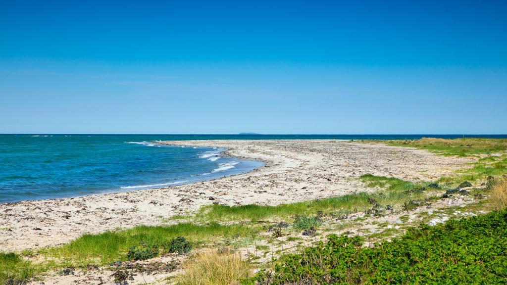 Nordøens sten og sandstrande (4)