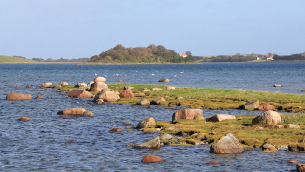 Staunsfjord (2)